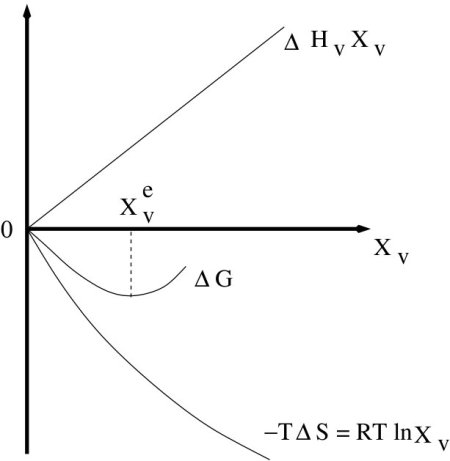 Graphical representation of minimization of free energy and equilibrium vacancy concentration