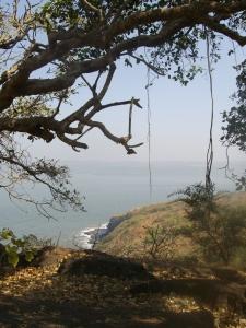Arabin sea: another angle